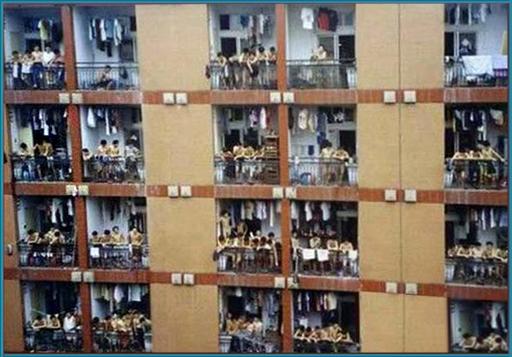 vot-tak-zhivut-kitajskie-studenti-7-foto-jumor_6