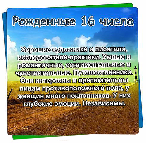 126428381_image__15_