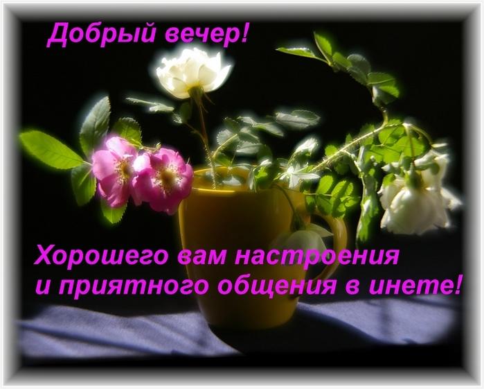 http://s01.yapfiles.ru/files/458151/24001031_dobruyy_vecher.jpg