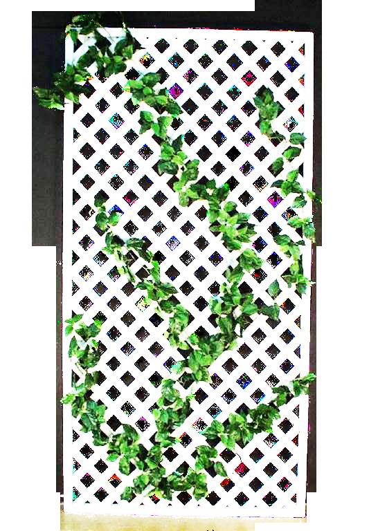 whitelatticewithgreen