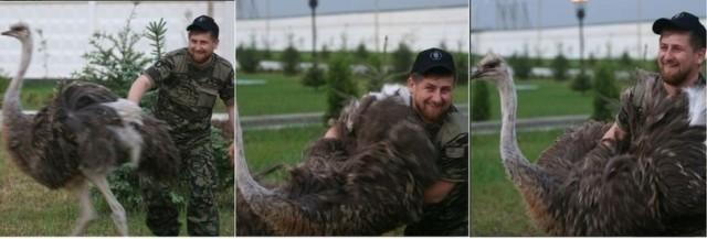 kadyrov_straus