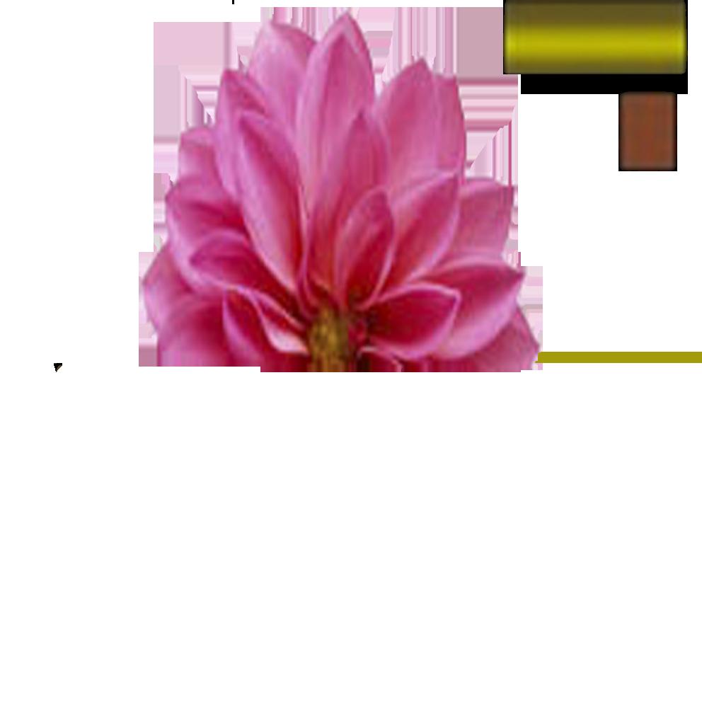 цветок текстура2