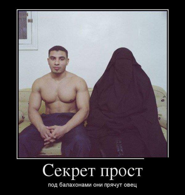Шутки, анекдоты, приколы и тп и тд ...: prestige-gaming.ru/shutki-anekdot-prikol-i-tp-i-td-t148-8580.html