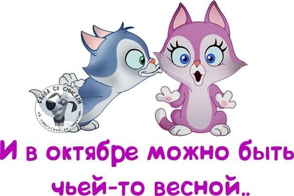 106540478_large_10