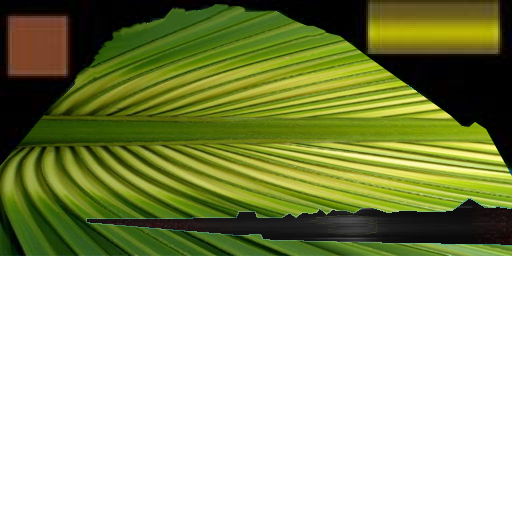 palm_list