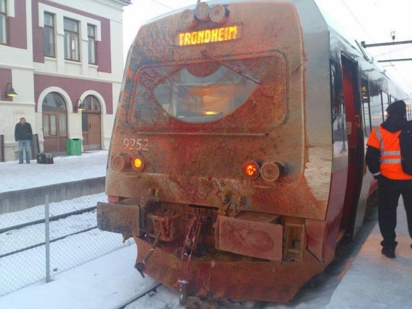 олень на поезде