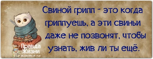 106954116_1383851180_frazochki15