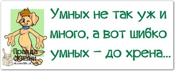 107540939_1385492188_frazochki25