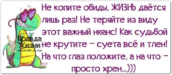 107540946_1385492213_frazochki18