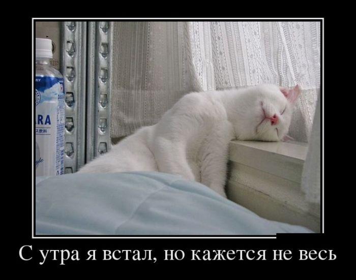 не будить !