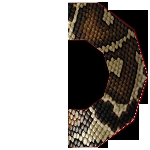 змей1
