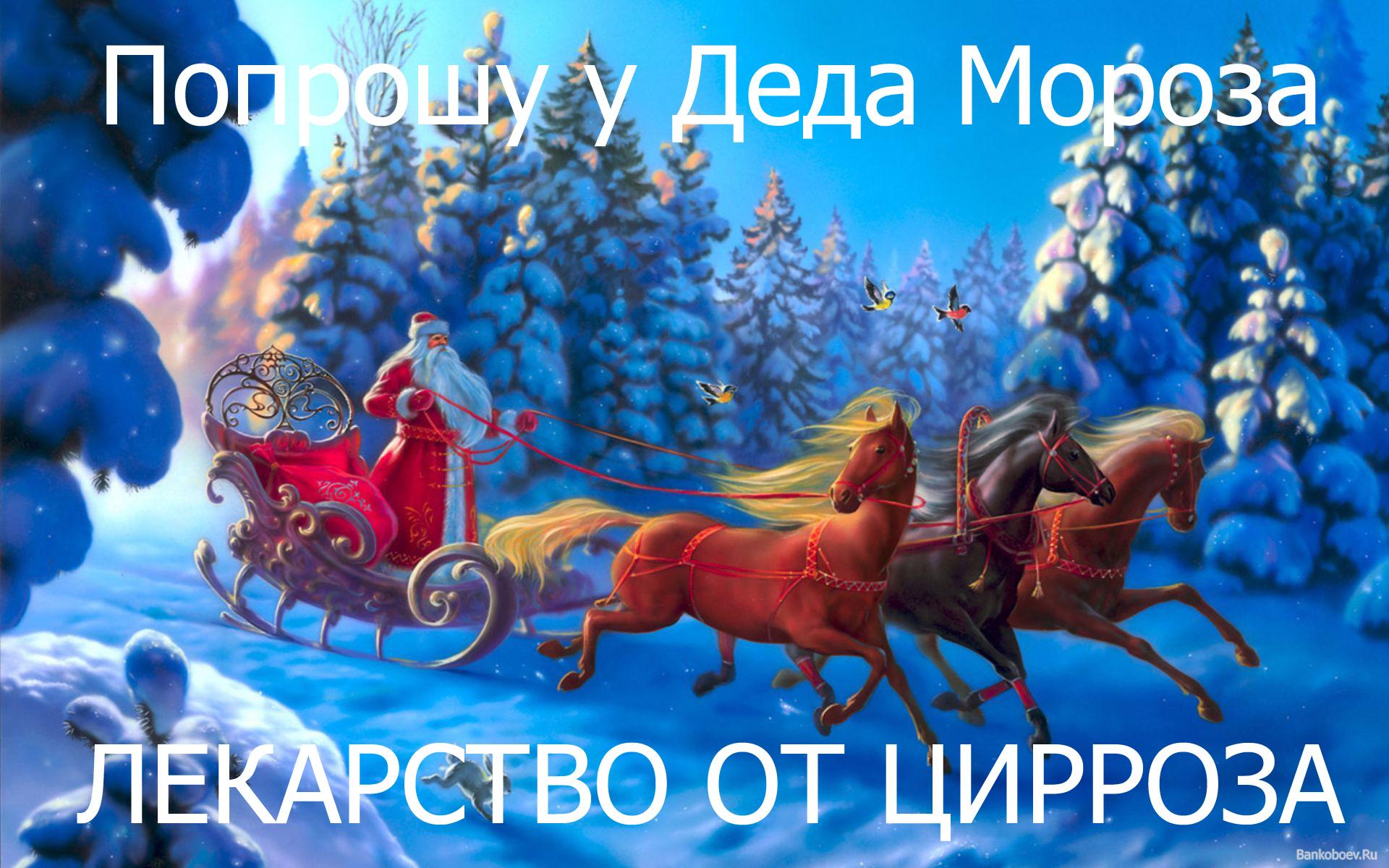 Bankoboev.Ru_ded_moroz_na_rezvoi_troike