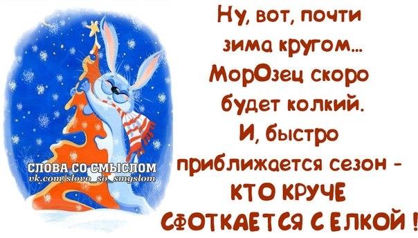 107927699_large_1386700599_frazochki8