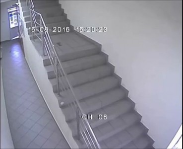 "Мошенник в г. Тюмень. Зоомагазин в ТЦ ""Тетрис"" 15.09.16"