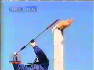 Кот-летяга