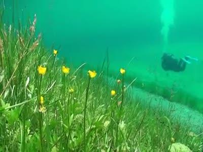 Grüner See - зеленое озеро