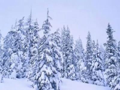 Зима.wmv