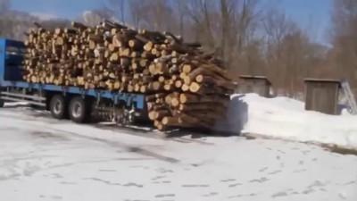 Быстрая разгрузка древесины