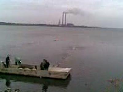Рыбалка в Курахово