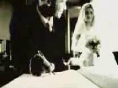 Неожиданность с невестой