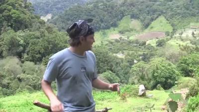 The Lost Waterfalls. Boquete, Panama