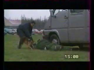 Собаки подразделения к-9 в действии