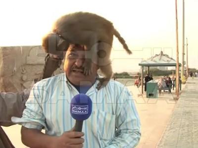 Трудности репортерской жизни