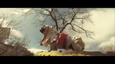 Assassin's Creed (Собачья версия)
