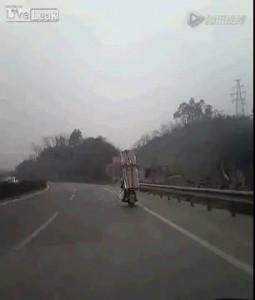 Перевозка холодильника на мотоцикле в Китае .