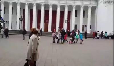Одесский пес-скейтбордист показал класс возле елки на Думской площади