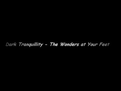Dark Tranquillity -  The Wonders at Your Feet (with lyrics)