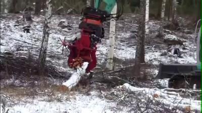 Вот как надо рубить дрова