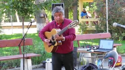 Чилийский гитарист