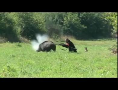 Кабан в загоне сбивает охотника.flv
