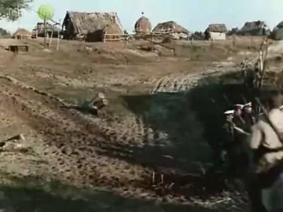 украина всегда