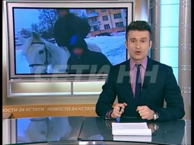 Взбесившаяся лошадь стала давить детей