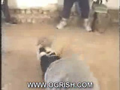 IRAQ-Execution turkish hostage