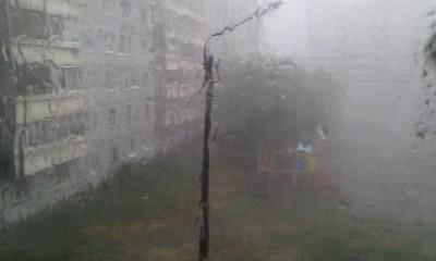 Летняя метель в Ульяновске