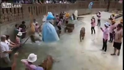 Туристы играют с тиграми в Таиланде