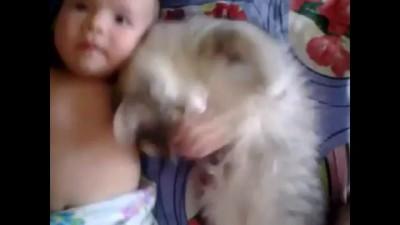 Котейка любит малыша