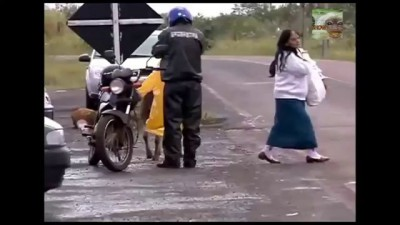 Baran attacks people, Баран атакует людей