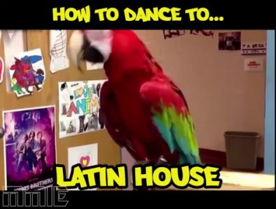 How To Dance To...