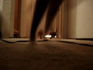 Котята испугались пылесоса