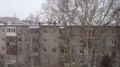 Барнаульский Прыгун СаняКрасава