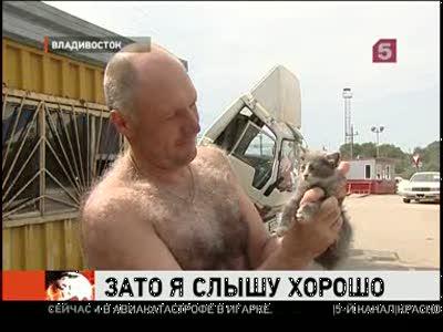 Четурехухий котенок Лунтик