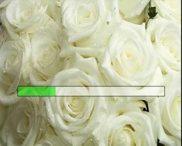 Круг Ирина и Королёв Виктор - Букет из белых роз (караоке, минус + бэк)