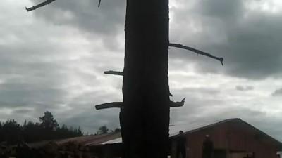 Вооруженное столкновение в Демьяново