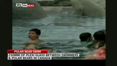 !!CHILDREN PADDLE WITH POLAR BEARS!!