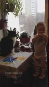 Бокс кота и малыша