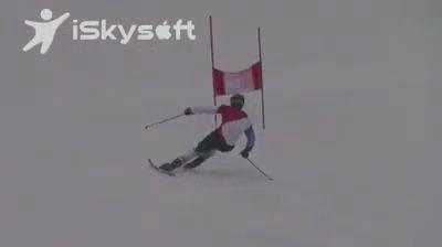 Лыжник и олень